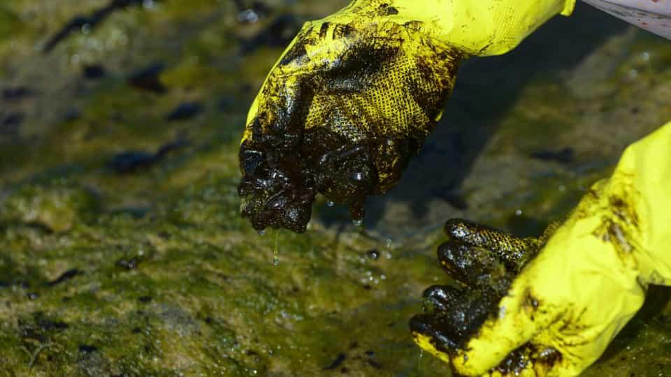 MPF cobra urgência da União para reunião de combate às manchas de óleo