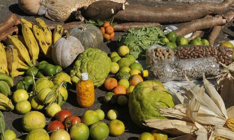 Programa de Aquisição de Alimentos repassará mais R$ 72,9 milhões aos estados