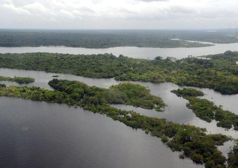 Governo age para preservar matas e biomas brasileiros