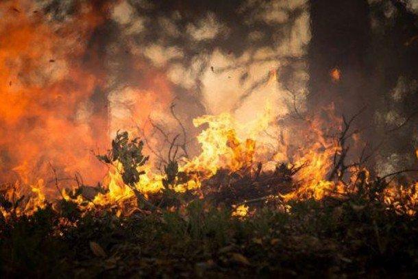 Aprosoja-MT lista dicas para evitar incêndios em áreas rurais