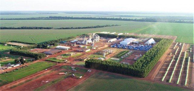 SLC Agrícola bate recorde na produção de soja pelo quarto ano