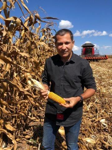Como solucionar a falta de milho?