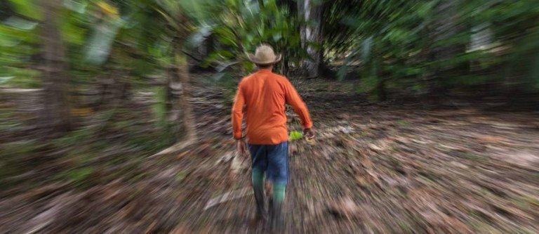 Aberto edital para contratar instituição financeira que atuará no Floresta+ Amazônia