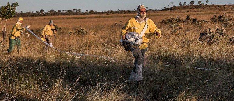 Governo Federal reforça prevenção a incêndios no Pantanal