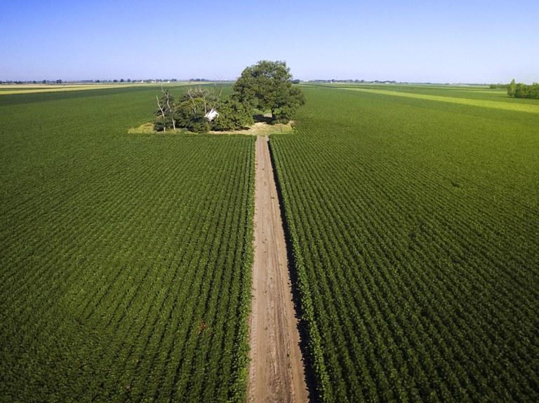 China corta produção de defensivos e fertilizantes; preços sobem para o Agro
