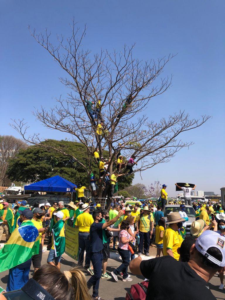 Balanço de manifestações de 7 de setembro de 2021 e repercussões